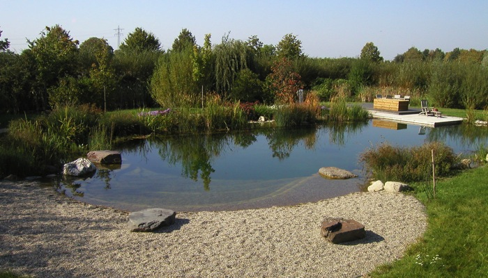 Bienvenue sur piscine naturelle bionova for Construccion de piscinas naturales ecologicas